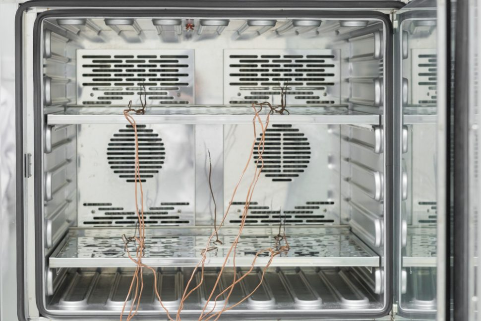 Inside of incubator with thermocouple probes installed for calibration service in laboratory